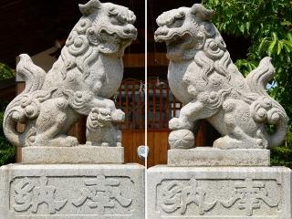 神明社(坂左右神社)の狛犬