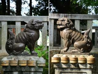 八百富社の狛犬