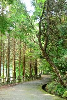 村積山自然公園