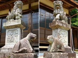 薬玉神社の狛犬