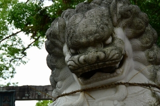 上地八幡宮の中国獅子