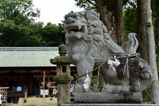 上地八幡宮の狛犬