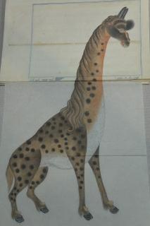 西尾市岩瀬文庫 珍獣動物園へようこそ