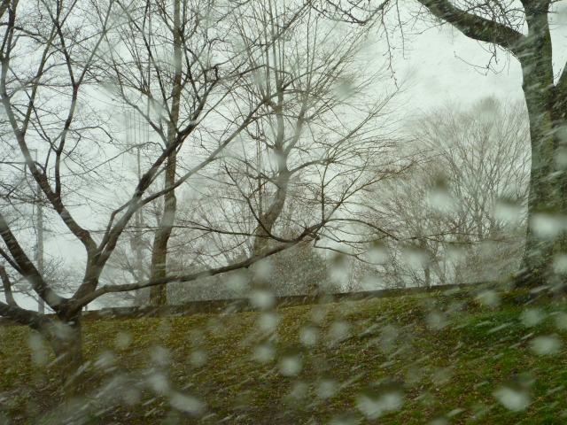 2014,3,10雪