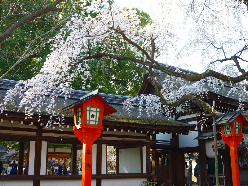 平野神社 1