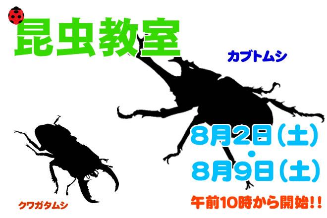 昆虫教室バナー