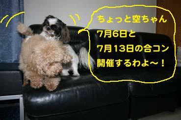 1_20140705182235ee5.jpg