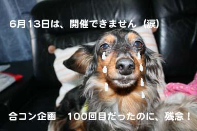 IMG_9166 のコピー