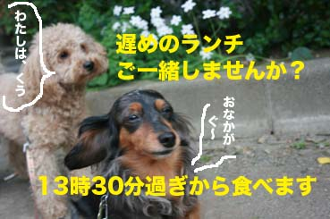 2_201404281644098bd.jpg