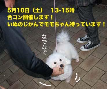 IMG_9598.jpg