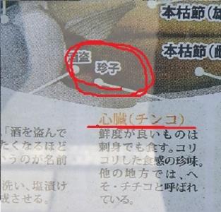 ねこおおおおおお (5)