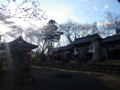 澪ロ桜 (5)