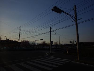 夢が足りないライス (12)
