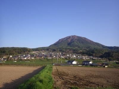 バイ王わさび (5)