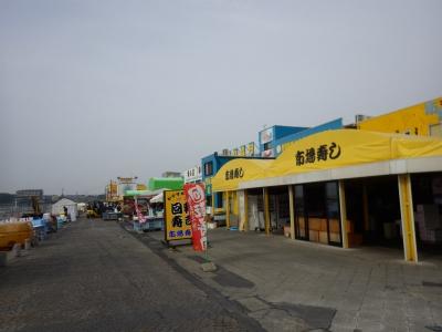 シャケなベイベー (1)