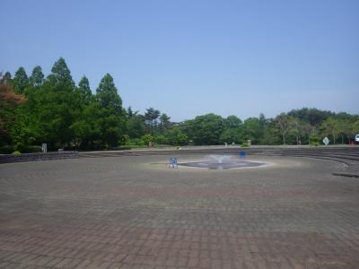 サイドザ噴水 (1)