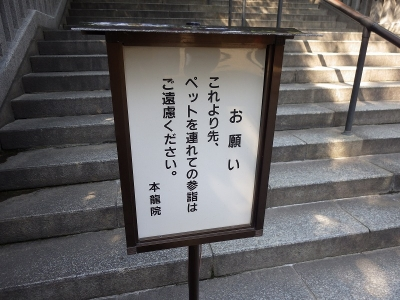煮込み・・・ (11)