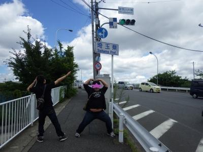まるめる (18)