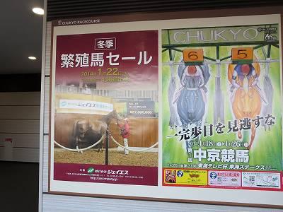 繁殖馬セールのポスター