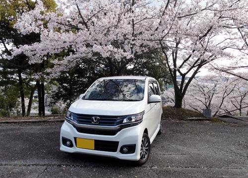 エヌワゴン桜4