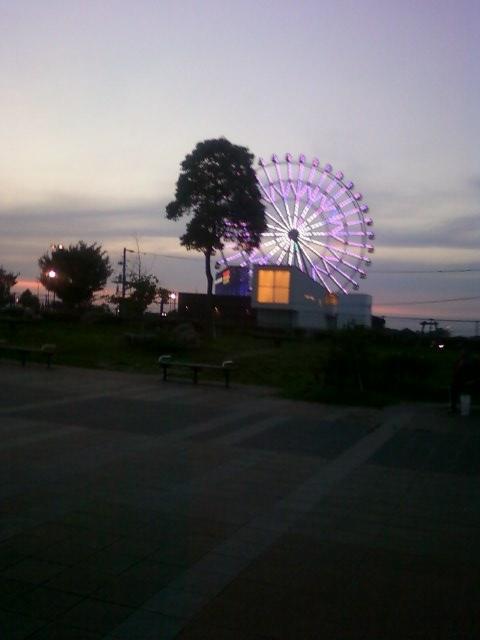 画像-0015