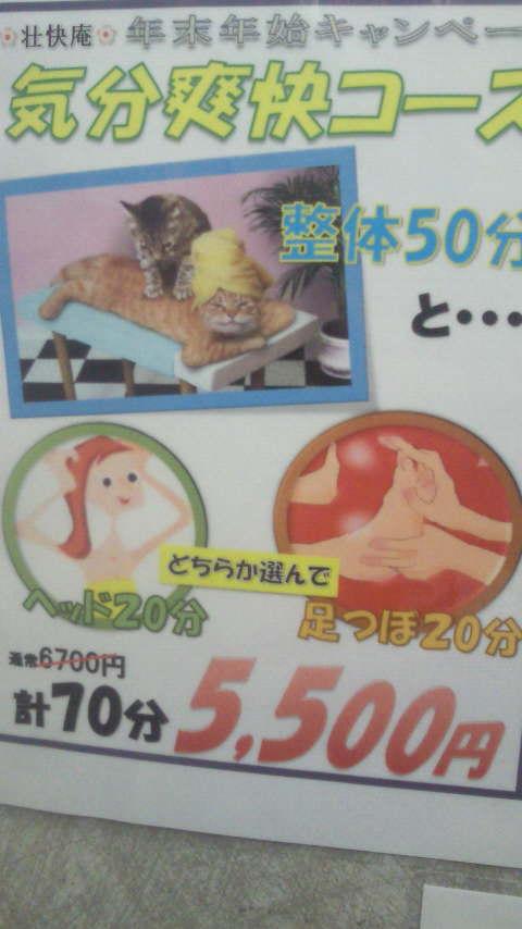 NEC_0016_201404062037398a9.jpg