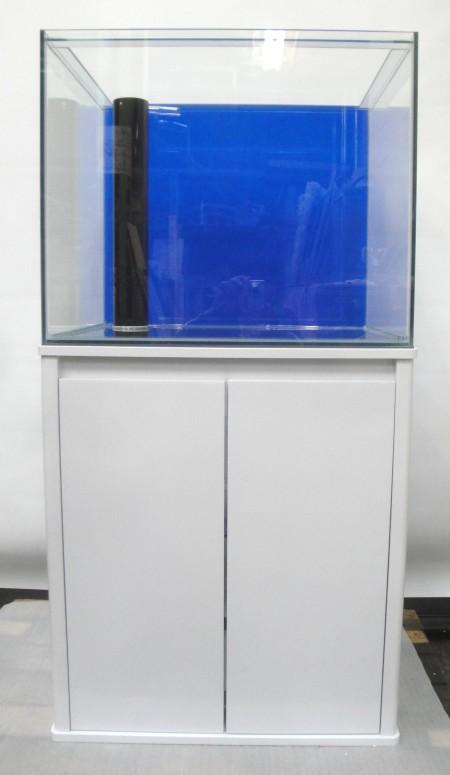 こちらはガラス水槽です。