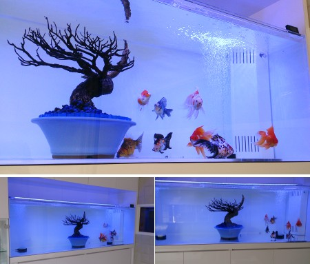 金魚が優雅に泳ぐ、お住まいとマッチした水槽です。