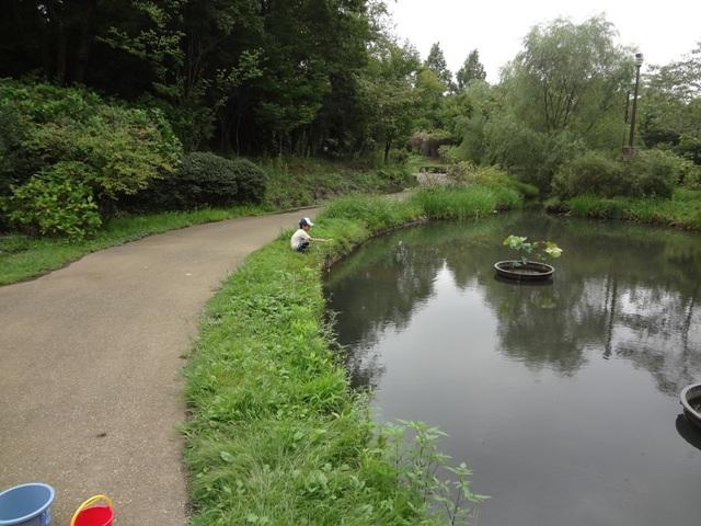 アンデルセン公園でザリガニ釣り