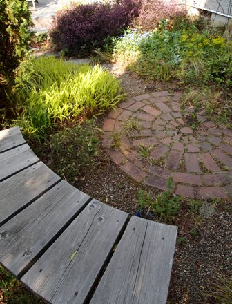 my-garden 027