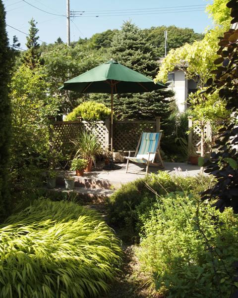 my-garden 008 (2)