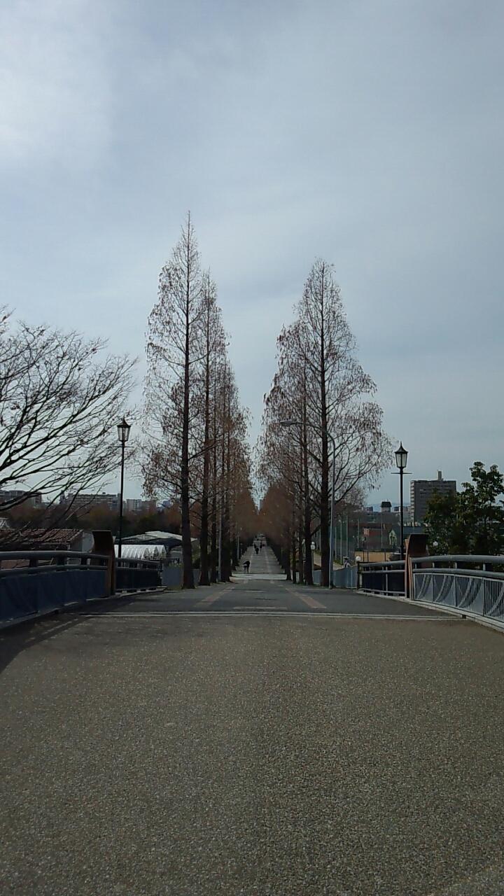 鶴見緑地公園2