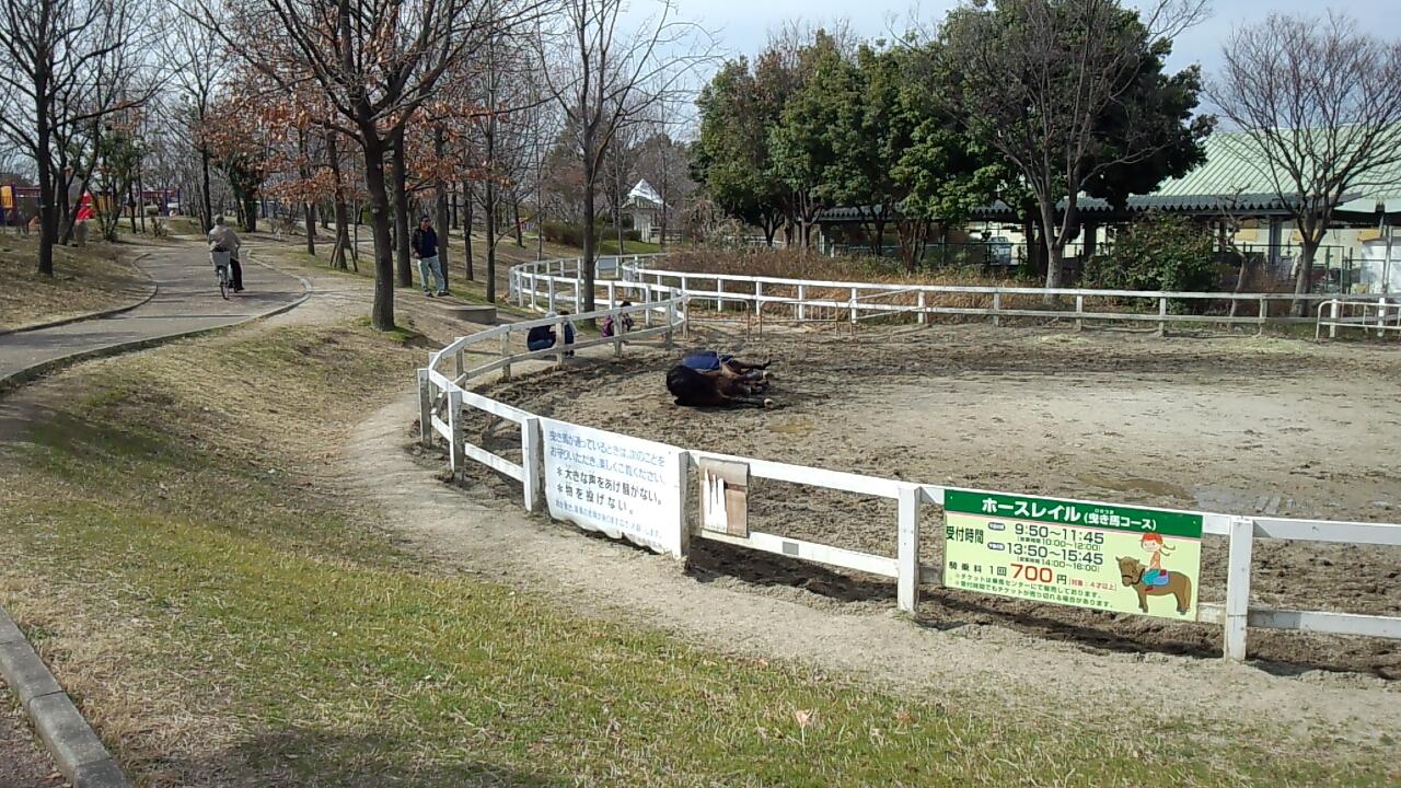 鶴見緑地公園3