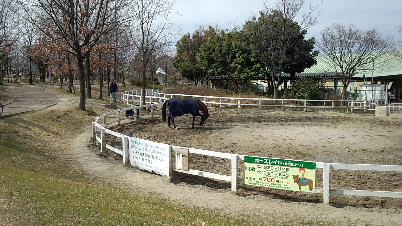 鶴見緑地公園4