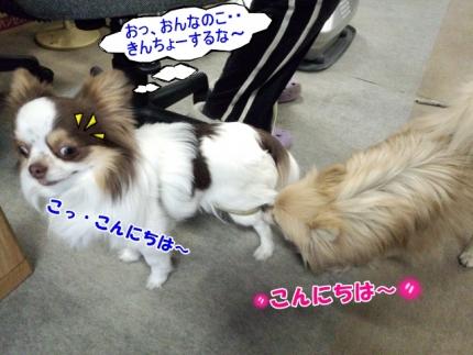 20140422じんくん①