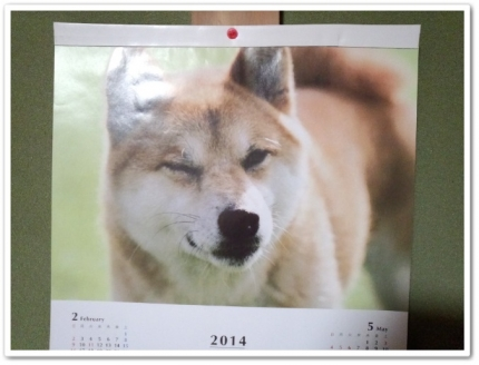 20140414ちこカレンダー