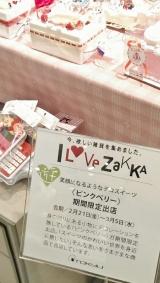 東急百貨店たまプラーザ店イベント会場お写真2