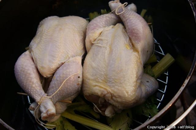 chicken1403e_eip.jpg