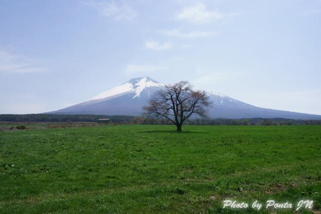 iwate140505-0015.jpg