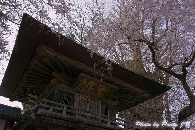 katakuri140427-0022a.jpg