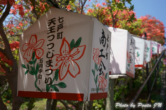 shichinohe1405-0009.jpg