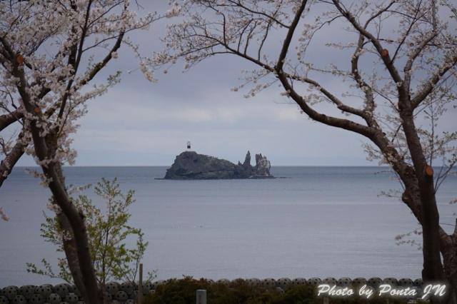 shimokita1405-0014.jpg