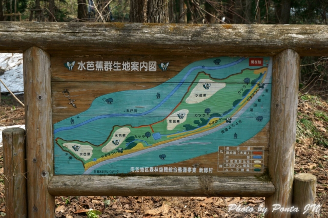 shingou1404-0009.jpg