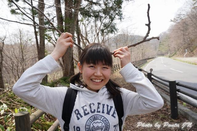 shingou1404-0011.jpg