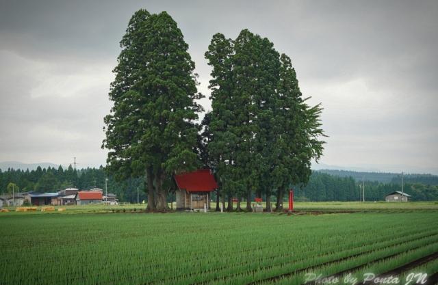 towada140621-100.jpg