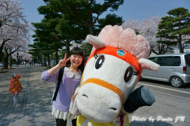 towadasakura14-0016.jpg