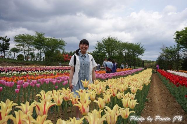 tulip14-0003.jpg