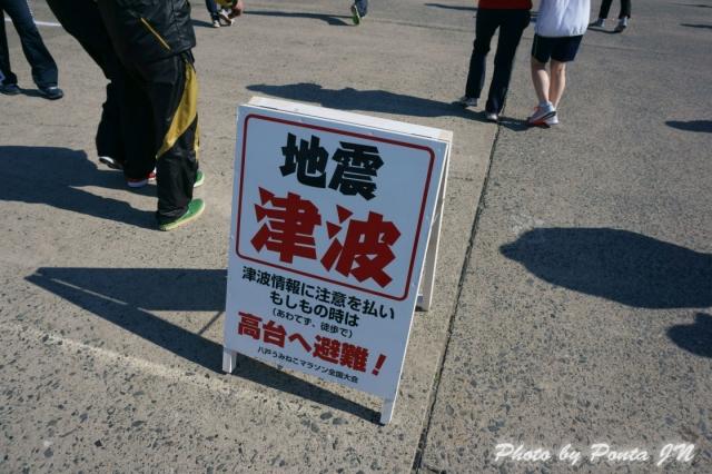 umineko1405-04.jpg