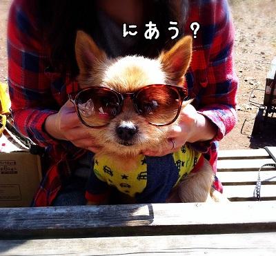 IMG_0991.jpg