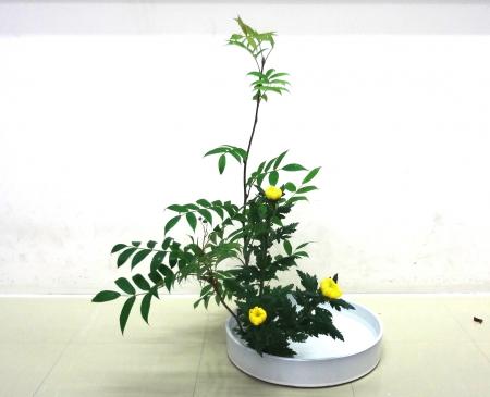DSC01274盛り花-140616